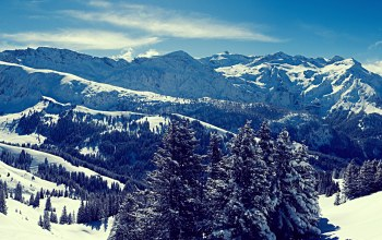 snow,mountain,forest,landscape,winter