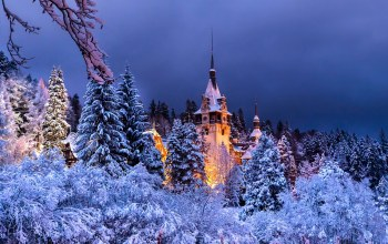scenery,peles,sinaia,winter,Romania