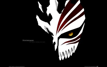 hollow,bleach,mask