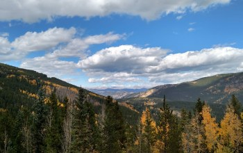 fall,evergreen,colorado.,colors,near