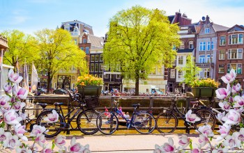 велосипед,bridge,old,spring,Весна,цветение,netherlands,blossom,Amsterdam,buildings
