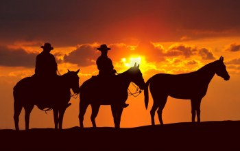 horse,american,Animal,Hat,cloud,cowboy,sky,kumo