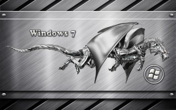 windows,dragon