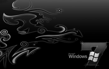 vector,windows,design
