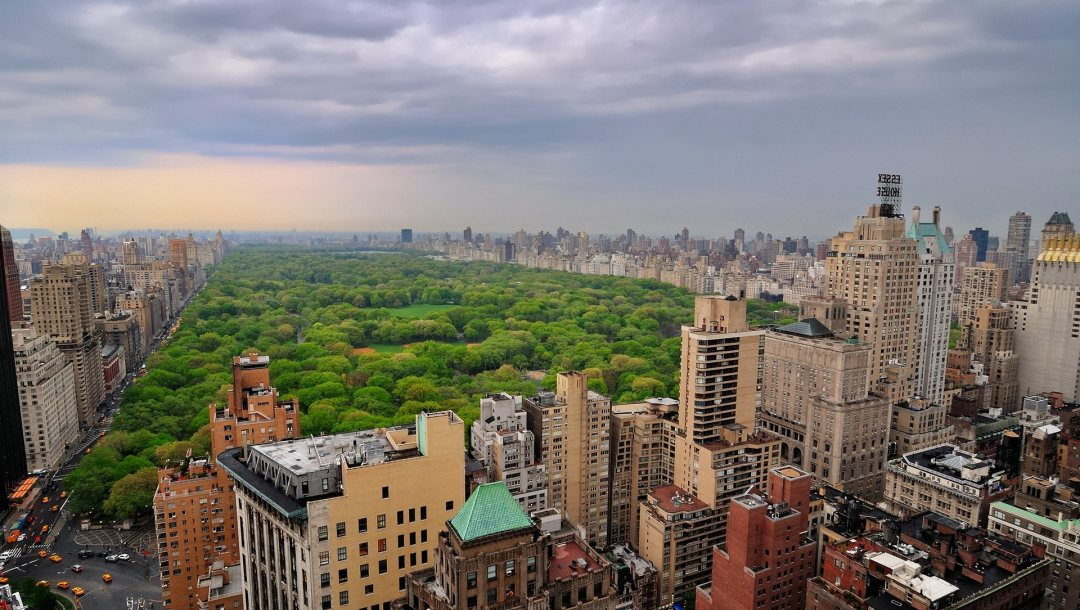 view,central,park,Nyc