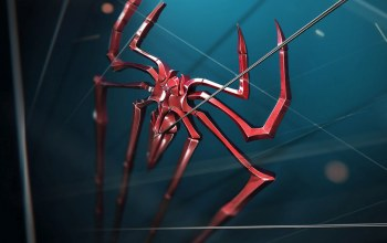 graphic,Spider