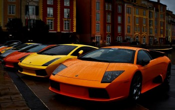 Colored,Lamborghini,brightly,cars