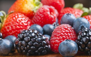 food,berries