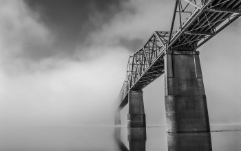 mist,monochrome,bridge,the,in