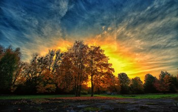 colorful,trees,Sunset,autumn