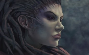 starcraft,queen of blades