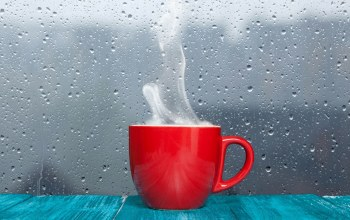 cup,the,дождь,rain,стекло,water,glass,couples,drops,капли,Вода