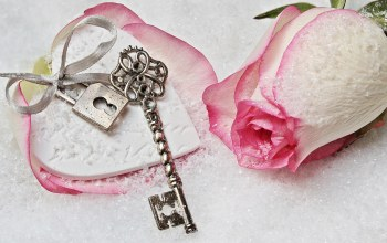 key,winter,lock,heart,snow,rose