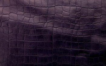 Purple,texture,Leather,кожа,crocodile skin