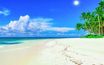beach,island,palms,summer,sand,paradise,tropical