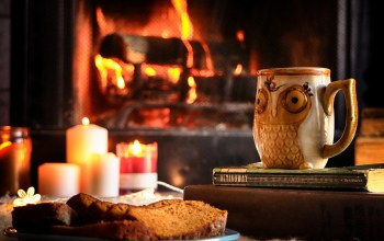 mug,candle,bread,tea,books,Owl,fireplace