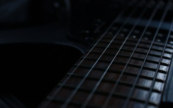 strings,guitar