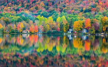reflection,elmore,colorful