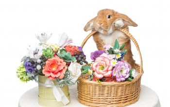 spring,bunny,кролик,цветы,Easter,happy,decoration,Rabbit,корзина,eggs