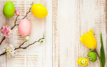 Весна,Easter,цветы,яйца крашеные,apple,spring,happy,decoration,eggs,blossom,wood,tulips