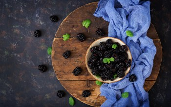 berries,wood,blackberry,ежевика