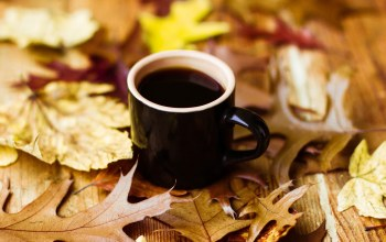 autumn,cup of coffee,leaves,fall,кофе,осень,book