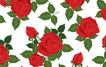 цветы,background,rose,vector