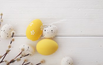 верба,spring,decoration,happy,eggs,Easter,wood,яйца крашеные