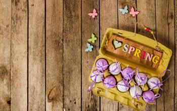 eggs,happy,Весна,spring,wood,Easter,decoration,яйца крашеные,Purple