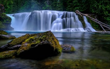 мох,lower lewis river falls,сша,водопад,washington,lewis river,вашингтон,река льюис
