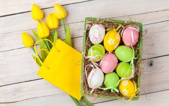 Easter eggs,spring,eggs,tulips,Happy easter