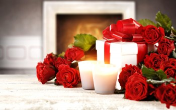 roses,красные розы,gift,Red,Valentine`s day,heart