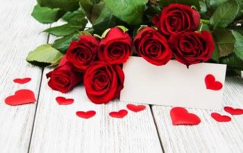 roses,Red,Valentine`s day,красные розы,heart