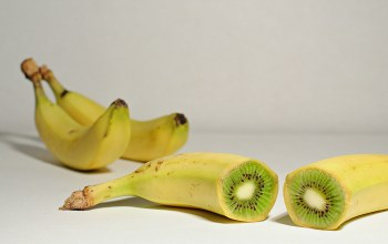 kiwi,fruits,Shadows,seeds,banana