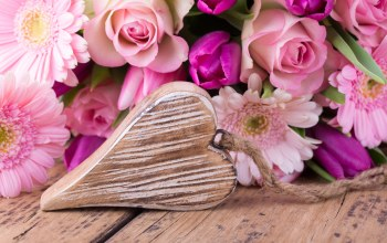 Valentine`s day,heart,roses