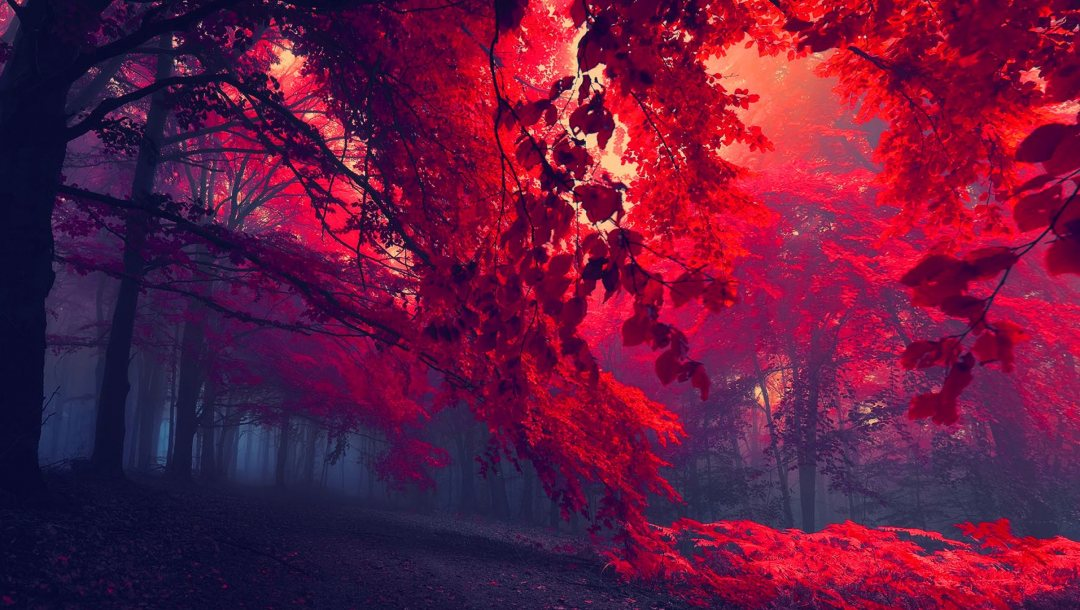 Red,forest,blood