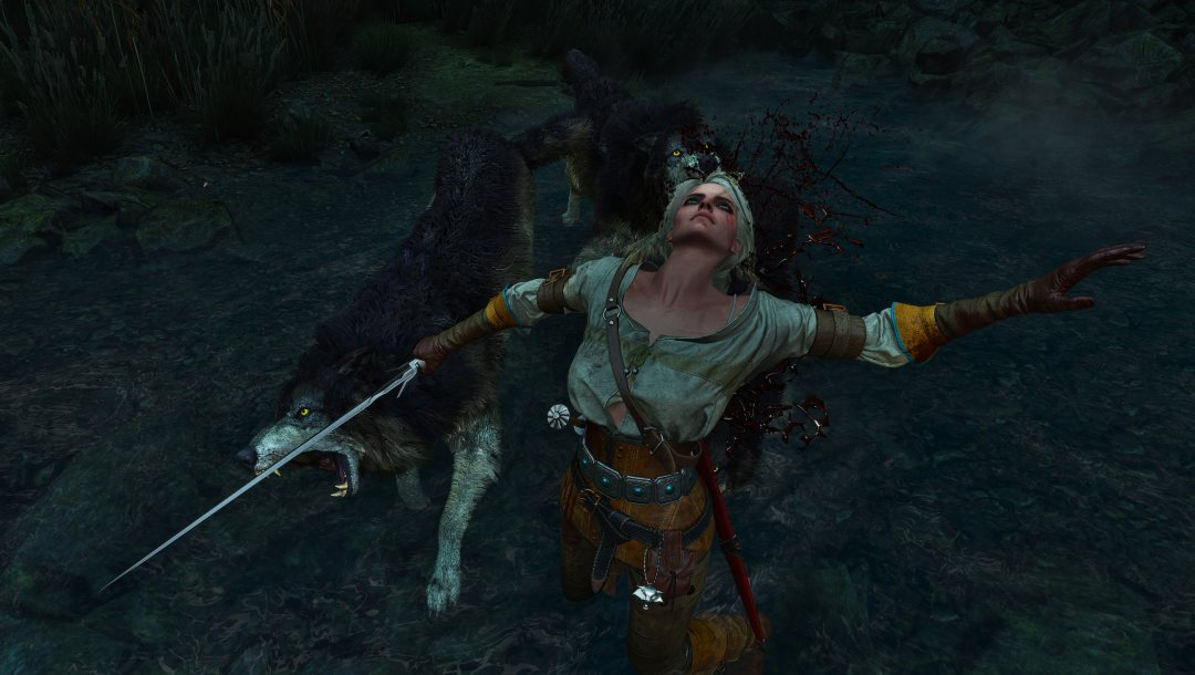 The witcher 3,the witcher,ведьмак 3 дикая охота,ведьмак,the witcher 3 wild hunt,ведьмак 3,Цирилла