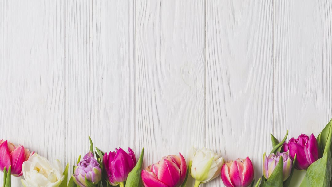 colorful,spring,tulips,Весна,цветы,доска,wood