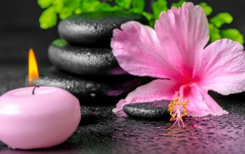 Spa,candles,spa stones,background
