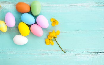 eggs,wood,colorful,happy,decoration,spring,Easter,яйца,цветы,tender,Весна