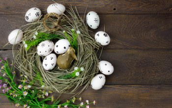 wood,яйца,decoration,Easter,spring,Весна,цветы,сено,eggs,happy