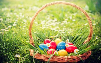 decoration,basket,happy,Easter,eggs,корзина,яйца крашеные,spring,цветы
