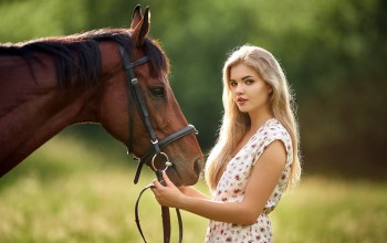 Lucka,Milan R,czech republic,лошадь,Beautiful Lucka,beautiful horse