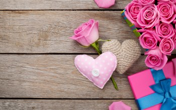 petals,Valentine`s day,heart,sweet,roses,gift