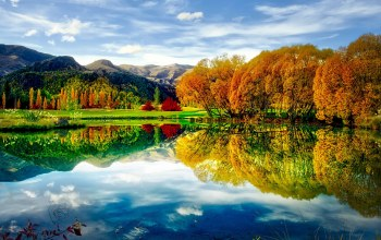 colors,autumn,reflection