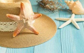Звезда,ракушки,starfish,wood,beach,Seashells,summer,доски,Marine