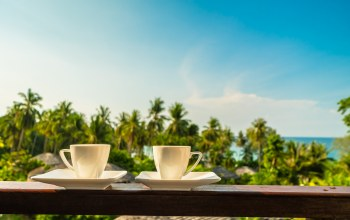 кофе,утро,vacation,каникулы,балкон,cup,palms,good morning,summer,tropical,beach,отдых,лето,cofee,paradise