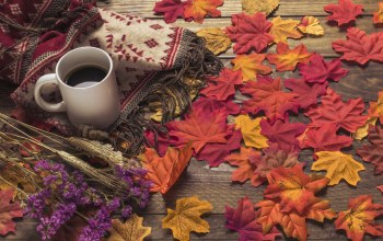 кофе,осень,шарф,autumn,maple,цветы,background,coffee,cup,осенние,colorful,leaves,wood