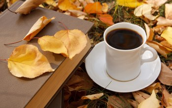 book,fall,cup of coffee,autumn,leaves,осень,кофе