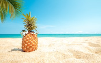 лето,paradise,отдых,pineapple,seascape,beach,tropical,каникулы,sunglasses,очки,sand,palms,ананас,summer